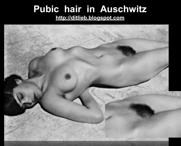 """Preview of """"pubic hair""""_2"""