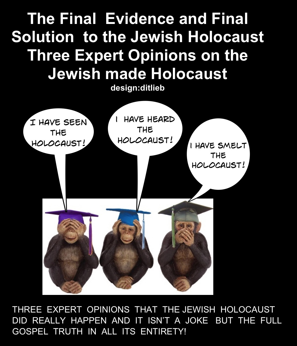 "Preview of ""Three expert opinions on the holocaust""_2"