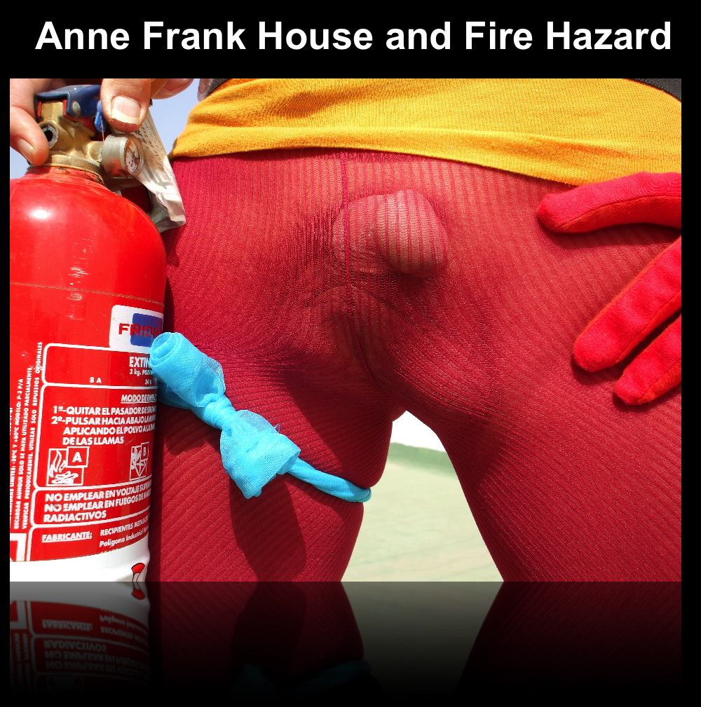 "Preview of ""ANNEFRANKHOUSEANDFIREHAZARD""_2"