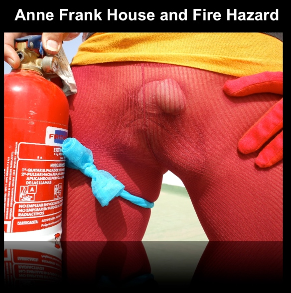 """Preview of """"ANNEFRANKHOUSEANDFIREHAZARD""""_2"""